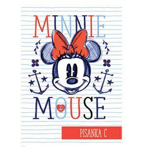 Bilježnica Pisanka C SILVER LINE 80g list Minnie