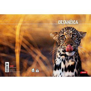 Crtančica za 1razred Target Leopard