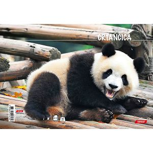 Crtančica za 1razred Target Panda