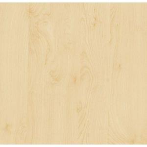 FOLIJA breza 200-2875 45cm d-c-fix
