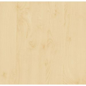FOLIJA breza 200-5475 90cm d-c-fix