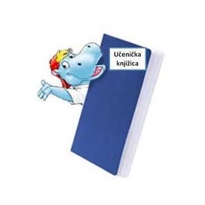 Učenička knjižica,Obrazac UT-XI-1-100